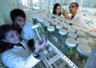 Inspirasi dari Kiprah Perempuan di Bidang Sains